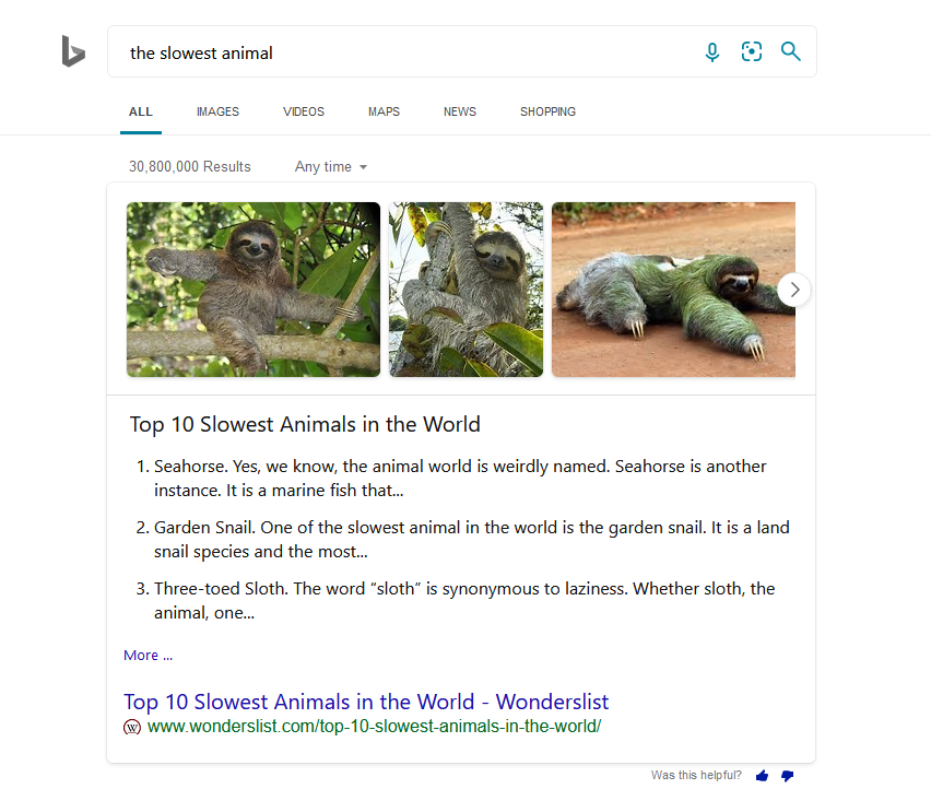 Bing search for slowest animal