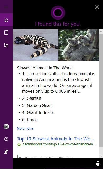 Cortana search for slowest animal