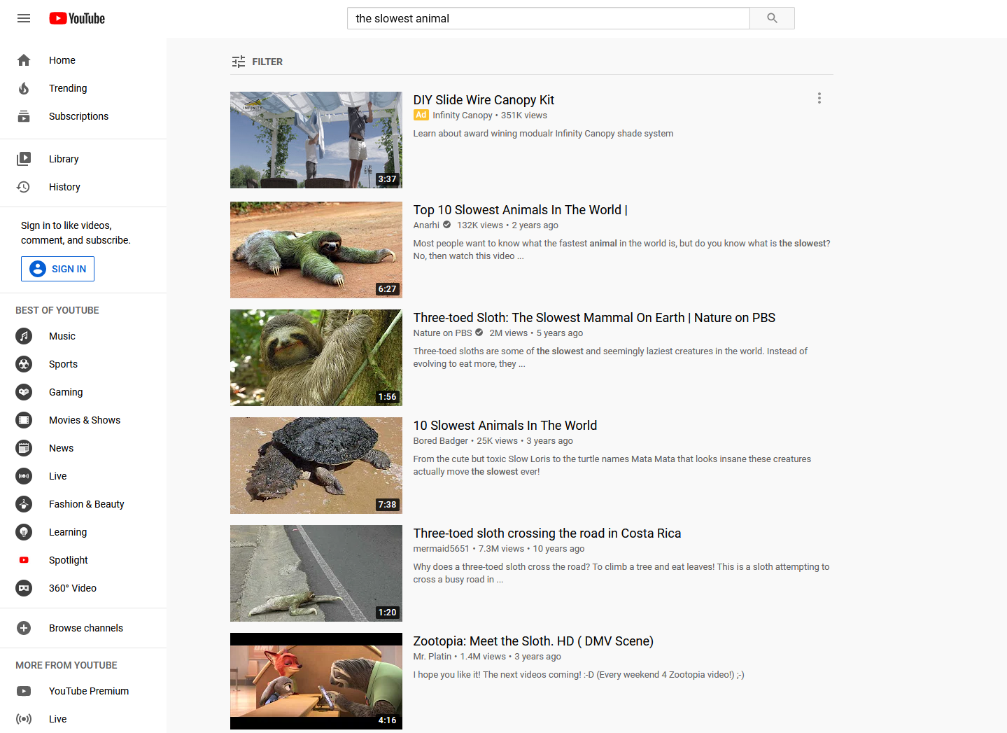YouTube search for slowest animal
